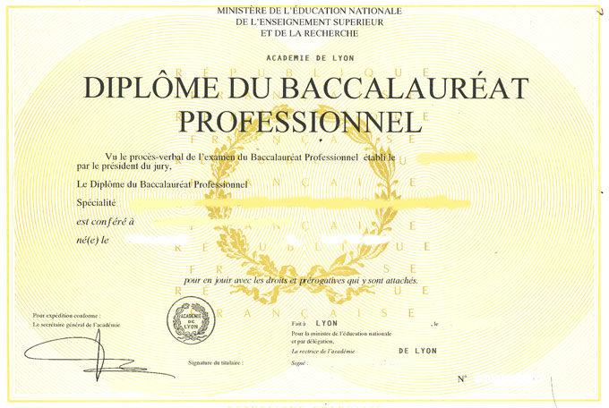 Bac-Professionnel.jpg