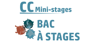 bac_a_stages.png